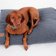 Snuggle Dreamer Dogpillow Denim Look Blue