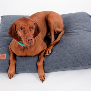 Snuggle Dreamer Hundekissen Denim Look Blau