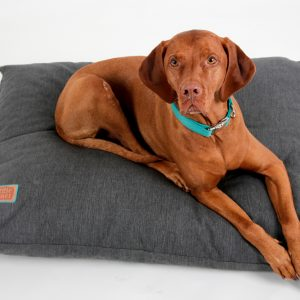 Snuggle Dreamer Dogpillow Denim Look Anthracite
