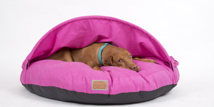 snuggle dreamer - Model Fresh Cave | Color: Pink