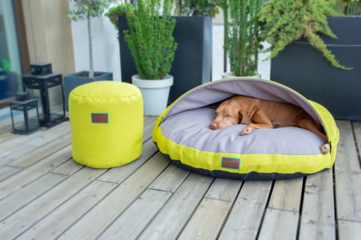 snuggle-dreamer-outdoor-hundehoehle_kokolores-lime-grey-hocker-Siton-Lime