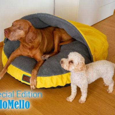 snuggle-dreamer-yellobello-edition