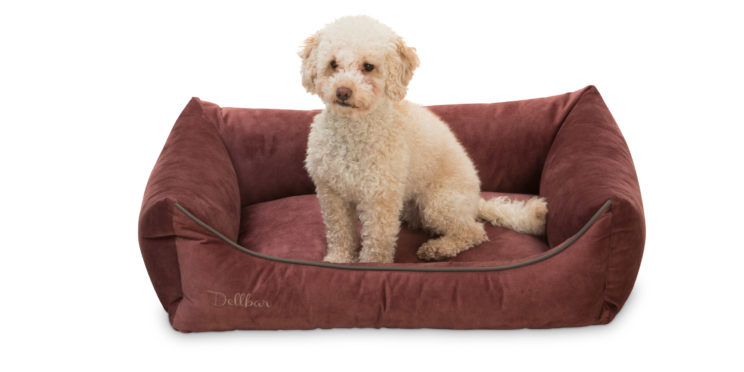 dellbar-dogbed-berry