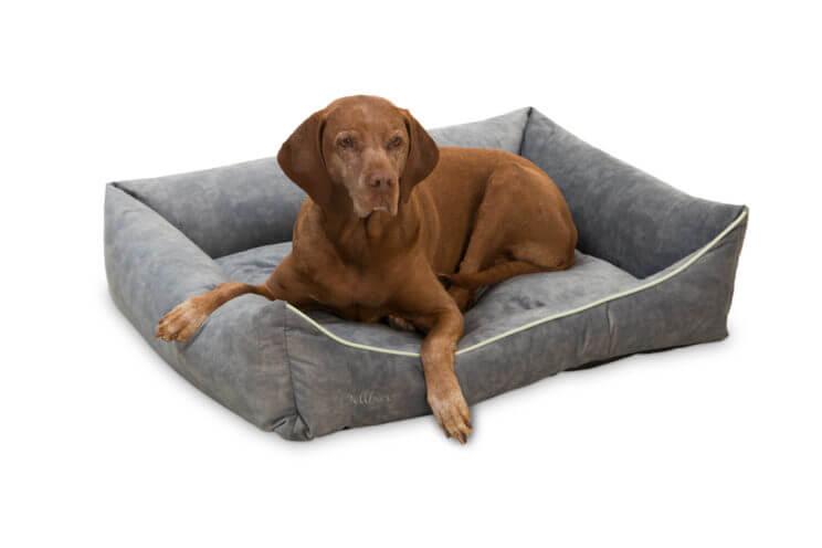 dellbar-dogbed-silber