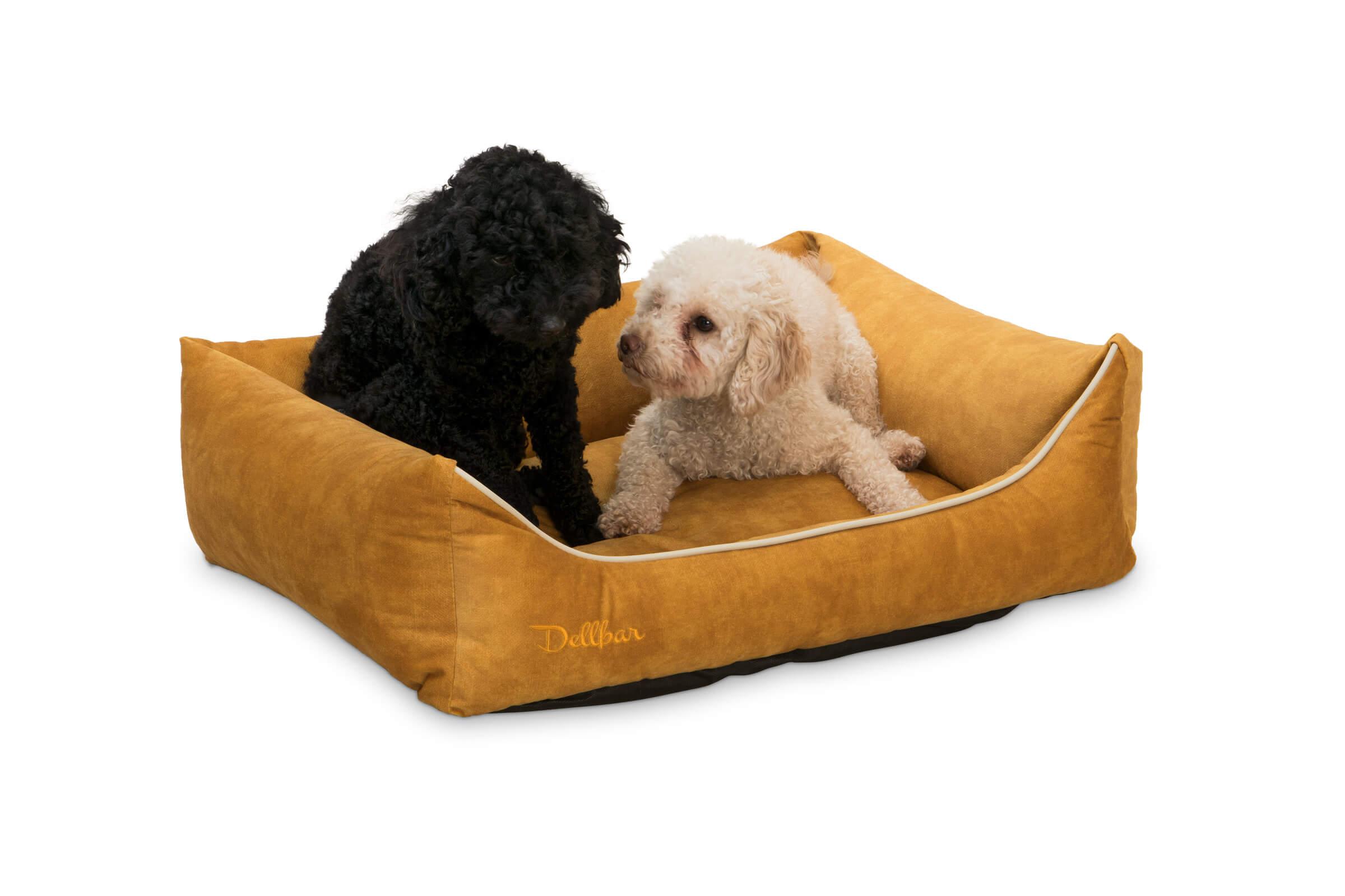 dellbar-dogbed-gelb